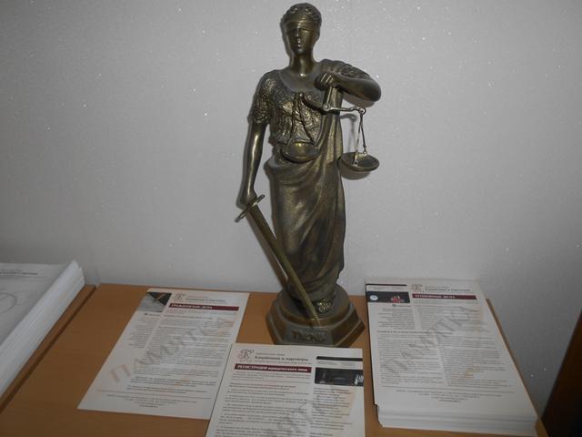 Как подать дело в конституционном суде